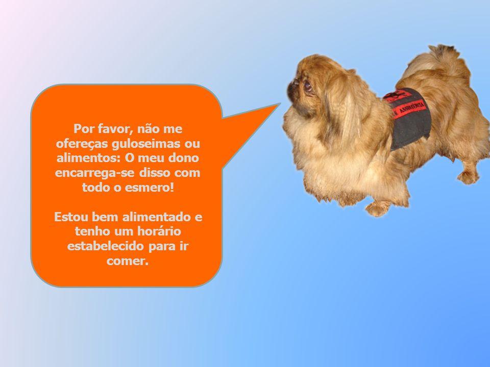 Mas ouve bem: Se trouxeres contigo outro cão, por favor controla-o para evitar que possa acontecer algum acidente quando passar ao meu lado ou ao lado