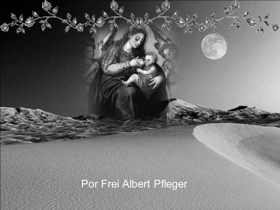Por Frei Albert Pfleger