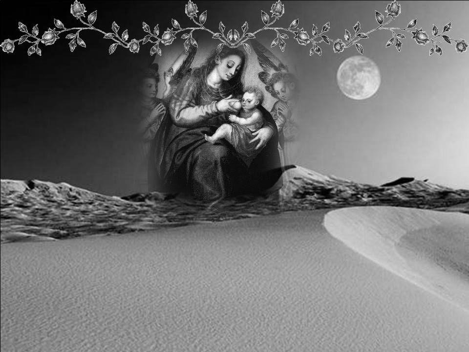 Encontrava dificuldade, igualmente, em compreender o verdadeiro sentido de uma outra expressão, bastante famosa e difundida (repetida na Igreja desde os primeiros séculos, quando, após um debate memorável, o Concílio de Éfeso, do ano 431, proclamara Nossa Senhora como Maria Theotokos, que quer dizer, Maria, Mãe de Deus), expressão que enfatiza ser Maria vitoriosa contra todas as heresias .