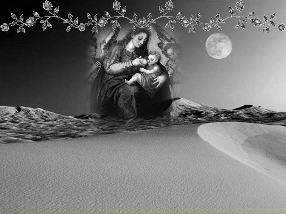 Em 1971, um grupo de teólogos luteranos da Alemanha Oriental publicou um manifesto que contém linhas de comovente lealdade: Em Lourdes, Fátima e tantos outros Santuários marianos, a crítica imparcial se encontra diante de fatos sobrenaturais que se relacionam profundamente com a Virgem Maria, quer devido às Aparições, quer às graças milagrosas solicitadas e atendidas por sua intercessão.