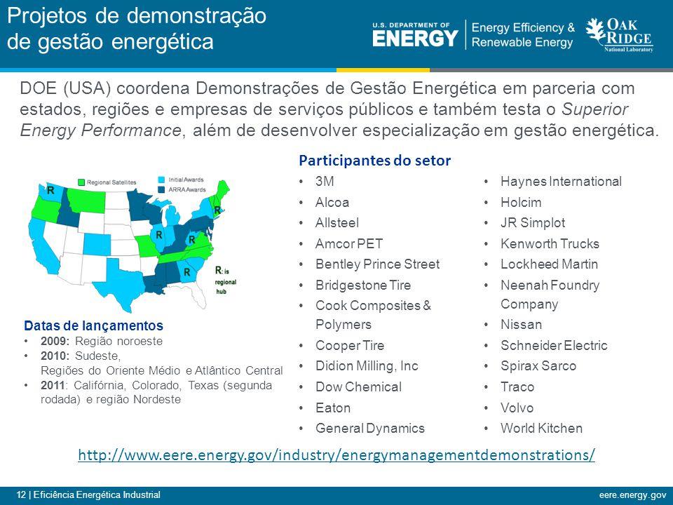 12 | Eficiência Energética Industrialeere.energy.gov Projetos de demonstração de gestão energética Datas de lançamentos 2009: Região noroeste 2010: Sudeste, Regiões do Oriente Médio e Atlântico Central 2011: Califórnia, Colorado, Texas (segunda rodada) e região Nordeste http://www.eere.energy.gov/industry/energymanagementdemonstrations/ 3M Alcoa Allsteel Amcor PET Bentley Prince Street Bridgestone Tire Cook Composites & Polymers Cooper Tire Didion Milling, Inc Dow Chemical Eaton General Dynamics Haynes International Holcim JR Simplot Kenworth Trucks Lockheed Martin Neenah Foundry Company Nissan Schneider Electric Spirax Sarco Traco Volvo World Kitchen Participantes do setor DOE (USA) coordena Demonstrações de Gestão Energética em parceria com estados, regiões e empresas de serviços públicos e também testa o Superior Energy Performance, além de desenvolver especialização em gestão energética.
