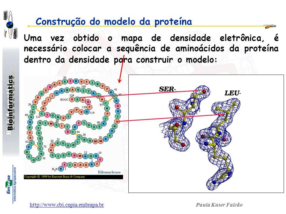 Paula Kuser Falcãohttp://www.cbi.cnpia.embrapa.br Construção do modelo da proteína Uma vez obtido o mapa de densidade eletrônica, é necessário colocar