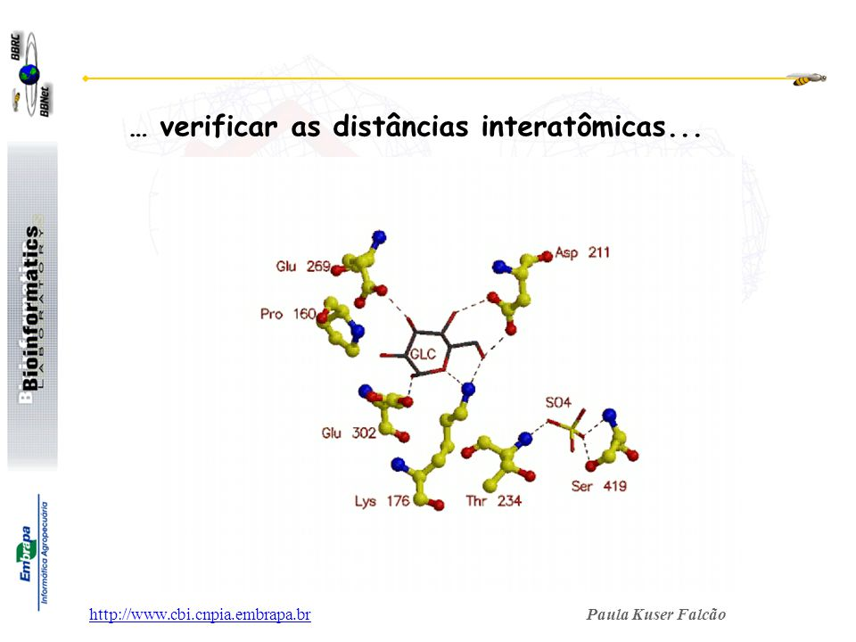 Paula Kuser Falcãohttp://www.cbi.cnpia.embrapa.br … verificar as distâncias interatômicas...