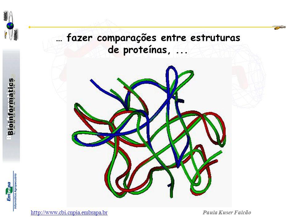 Paula Kuser Falcãohttp://www.cbi.cnpia.embrapa.br … fazer comparações entre estruturas de proteínas,...