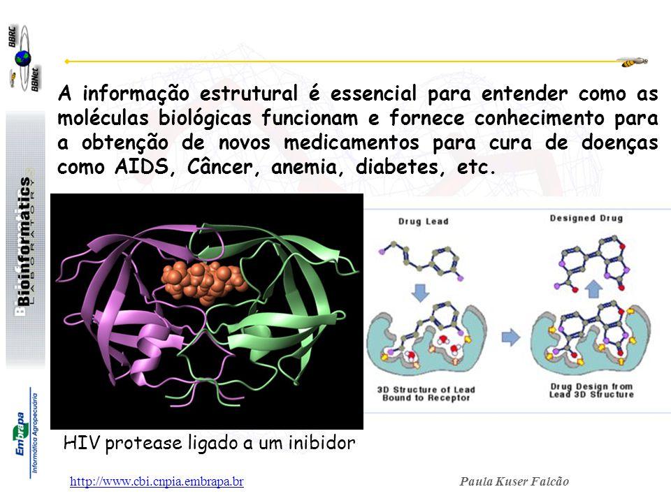 Paula Kuser Falcãohttp://www.cbi.cnpia.embrapa.br A informação estrutural é essencial para entender como as moléculas biológicas funcionam e fornece c