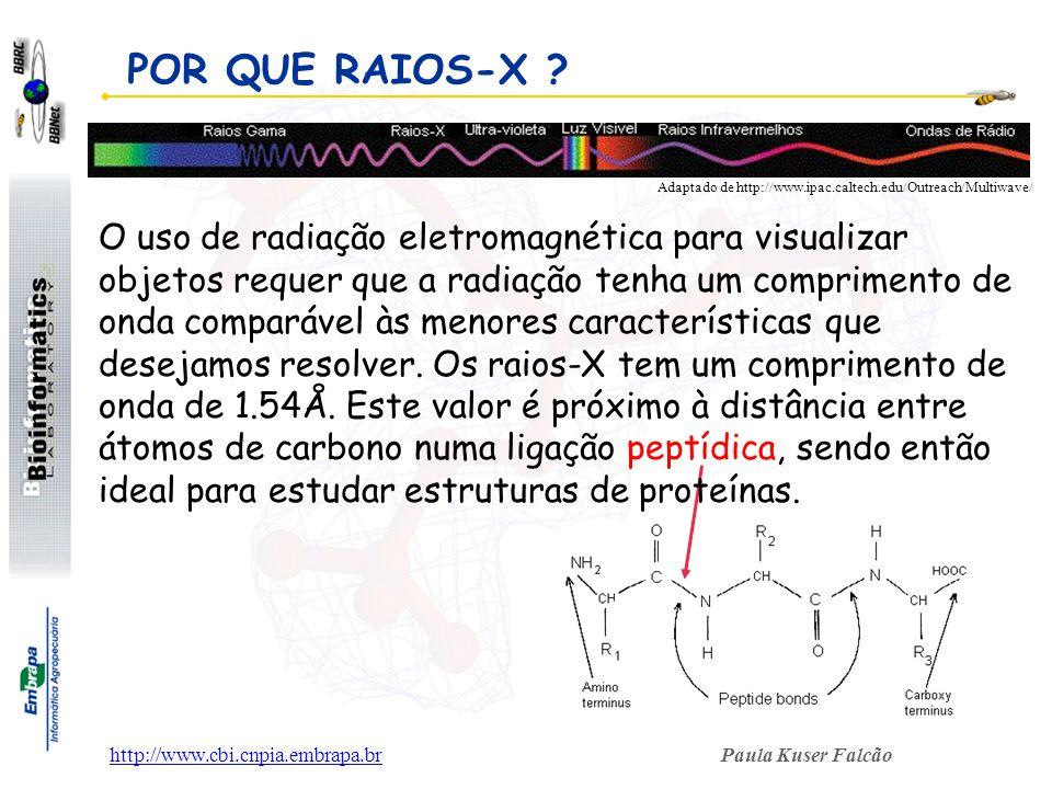 Paula Kuser Falcãohttp://www.cbi.cnpia.embrapa.br POR QUE RAIOS-X ? Adaptado de http://www.ipac.caltech.edu/Outreach/Multiwave/ O uso de radiação elet
