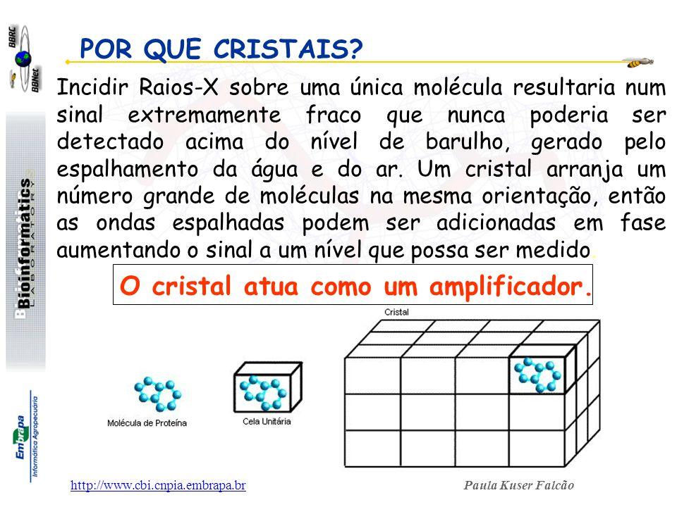 Paula Kuser Falcãohttp://www.cbi.cnpia.embrapa.br Incidir Raios-X sobre uma única molécula resultaria num sinal extremamente fraco que nunca poderia s