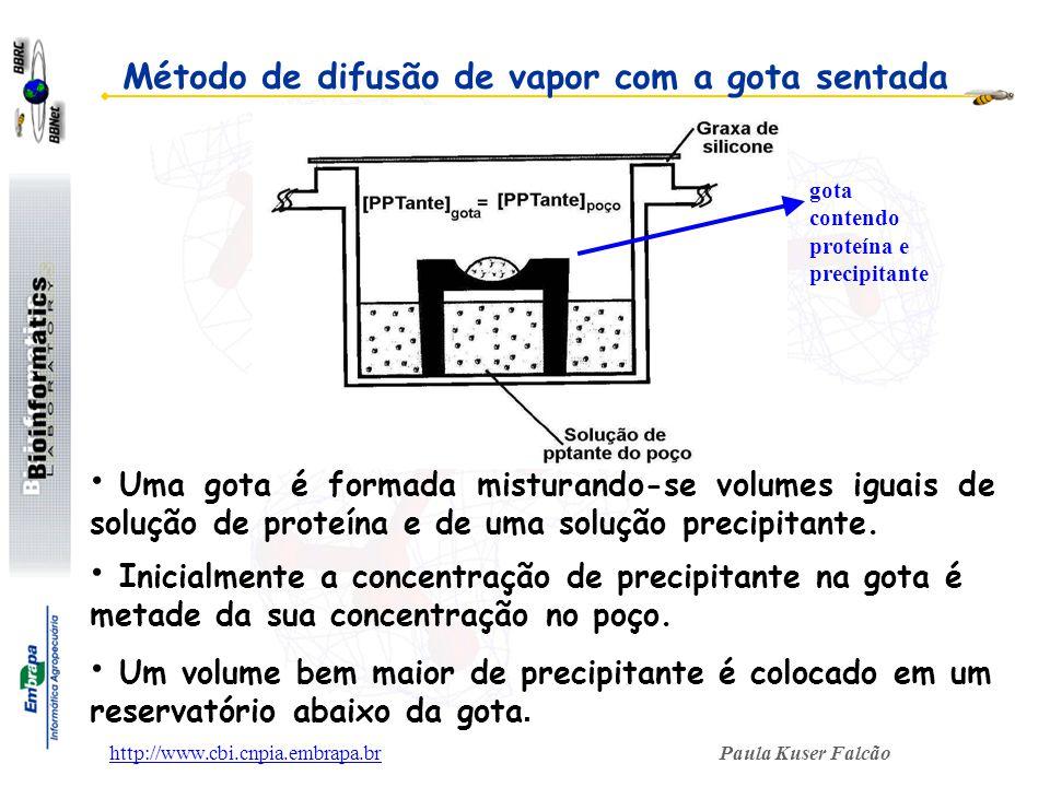 Paula Kuser Falcãohttp://www.cbi.cnpia.embrapa.br Uma gota é formada misturando-se volumes iguais de solução de proteína e de uma solução precipitante