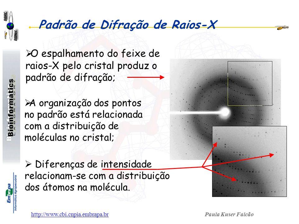 Paula Kuser Falcãohttp://www.cbi.cnpia.embrapa.br Padrão de Difração de Raios-X A organização dos pontos no padrão está relacionada com a distribuição