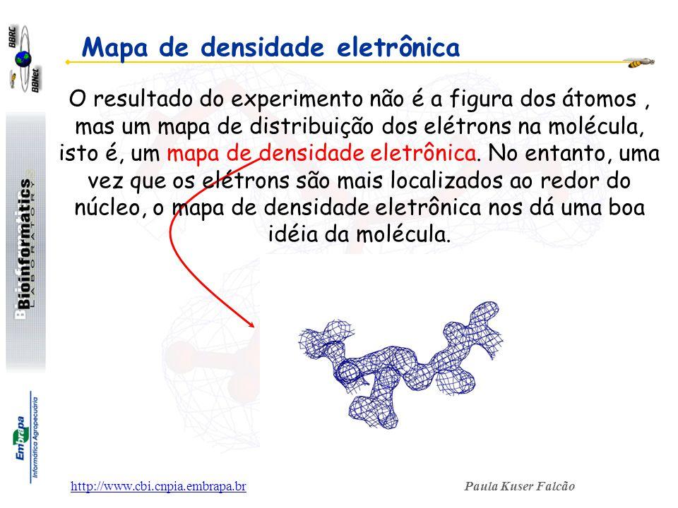 Paula Kuser Falcãohttp://www.cbi.cnpia.embrapa.br Mapa de densidade eletrônica O resultado do experimento não é a figura dos átomos, mas um mapa de di