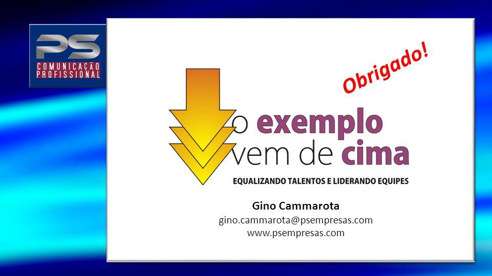 Gino Cammarota gino.cammarota@psempresas.com www.psempresas.com Obrigado!