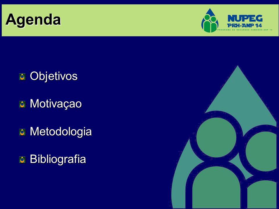 Agenda ObjetivosMotivaçaoMetodologiaBibliografia