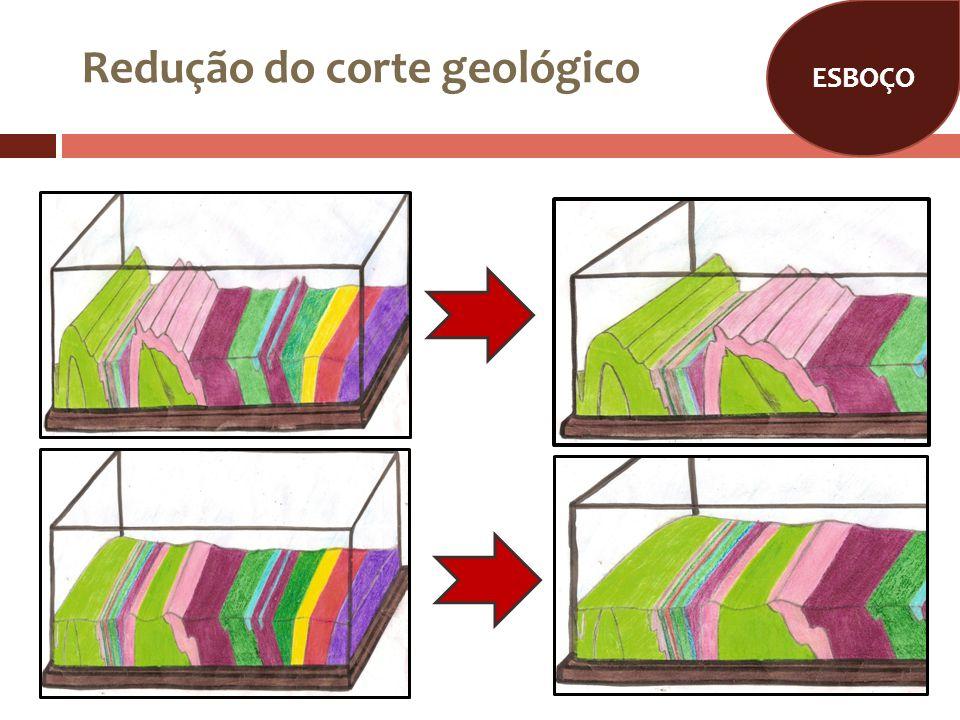 SITUAÇÃO INICIAL Era Paleozoica Inicio do período Silúrico.