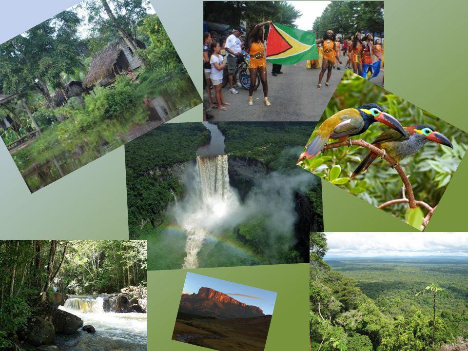 GUIANA FRANCESA Área: 83.534 km².População: 178 mil (2003).