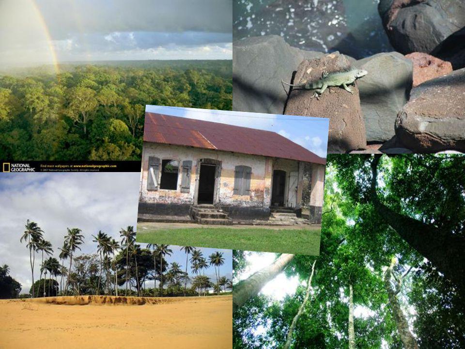 SURINAME Área: 163.820 km².População: 439 mil (2004) Capital: Paramaribo.