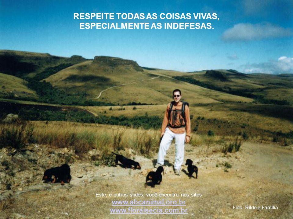 Foto: Rildo e Família RESPEITE TODAS AS COISAS VIVAS, ESPECIALMENTE AS INDEFESAS.