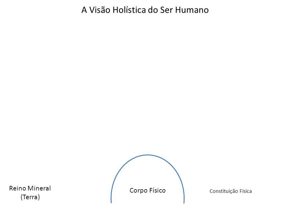 Corpo Físico Reino Mineral (Terra) Constituição Física A Visão Holística do Ser Humano