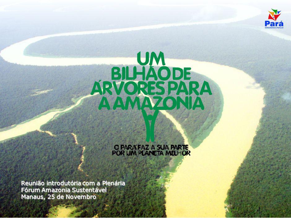 CONFIDENCIAL Reunião introdutória com a Plenária Fórum Amazonia Sustentável Manaus, 25 de Novembro