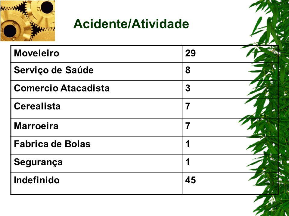 Moveleiro29 Serviço de Saúde8 Comercio Atacadista3 Cerealista7 Marroeira7 Fabrica de Bolas1 Segurança1 Indefinido45 Acidente/Atividade
