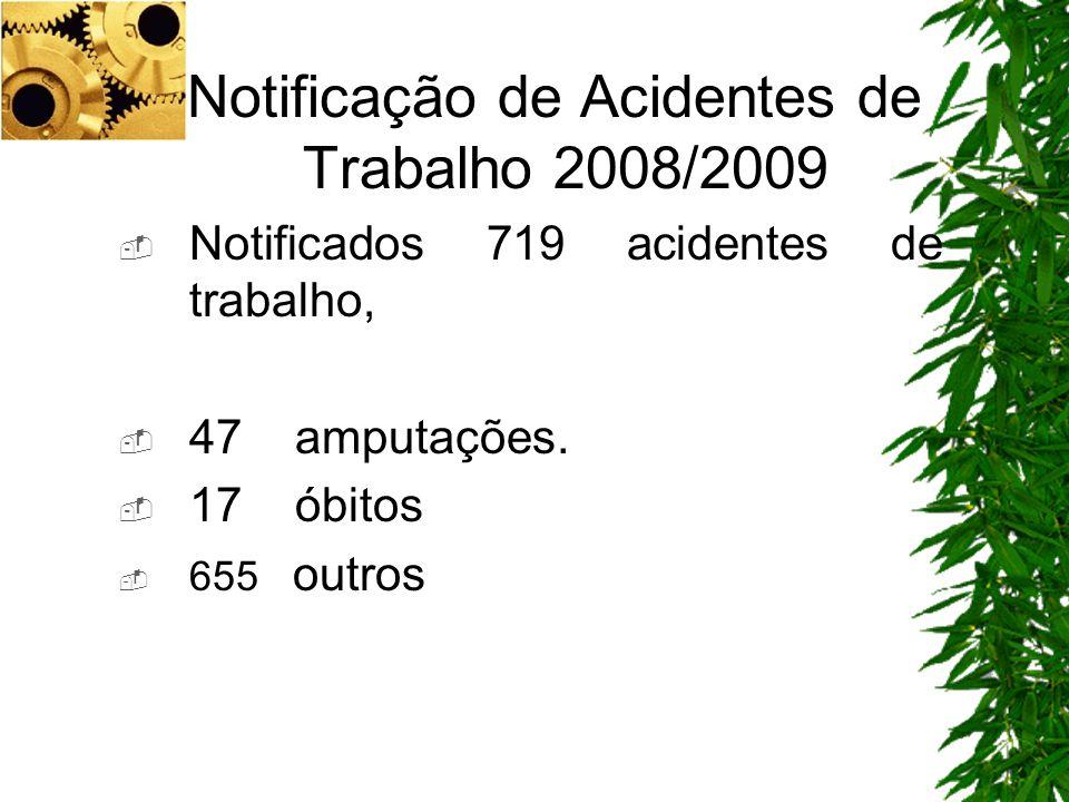 Notificação de Acidentes de Trabalho 2008/2009 Notificados 719 acidentes de trabalho, 47 amputações. 17 óbitos 655 outros