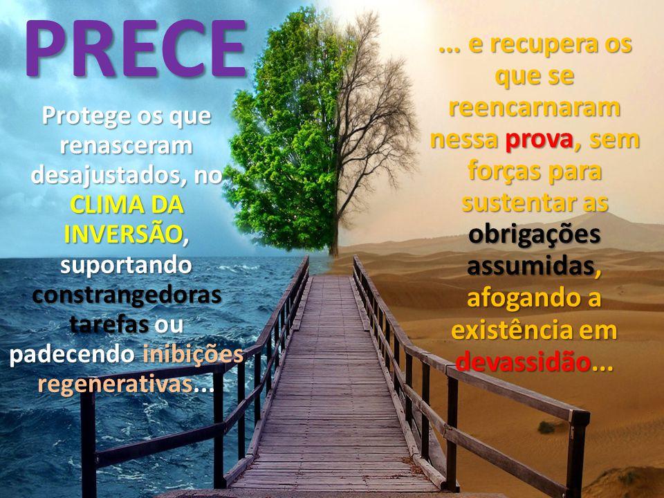 PRECE... e recupera os que se reencarnaram nessa prova, sem forças para sustentar as obrigações assumidas, afogando a existência em devassidão... Prot