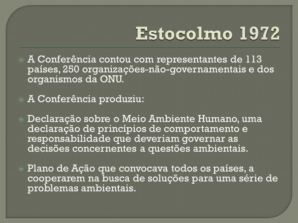 A Conferência contou com representantes de 113 países, 250 organizações-não-governamentais e dos organismos da ONU. A Conferência produziu: Declaração