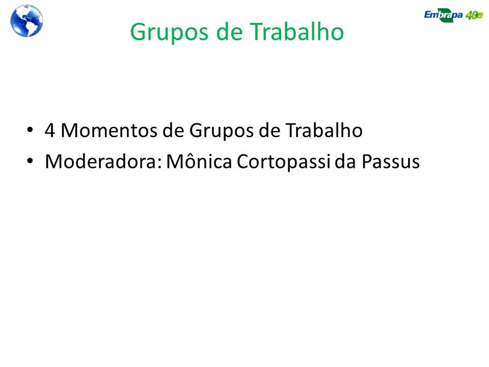 Grupos de Trabalho 4 Momentos de Grupos de Trabalho Moderadora: Mônica Cortopassi da Passus
