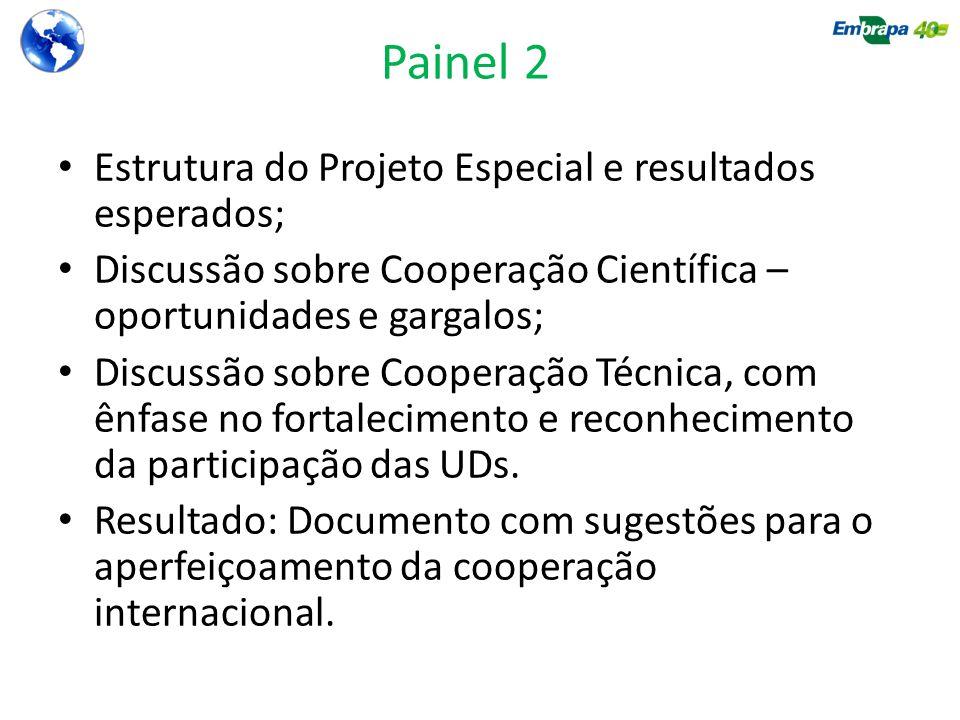 Painel 2 Estrutura do Projeto Especial e resultados esperados; Discussão sobre Cooperação Científica – oportunidades e gargalos; Discussão sobre Coope