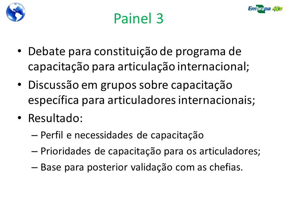 Painel 3 Debate para constituição de programa de capacitação para articulação internacional; Discussão em grupos sobre capacitação específica para art