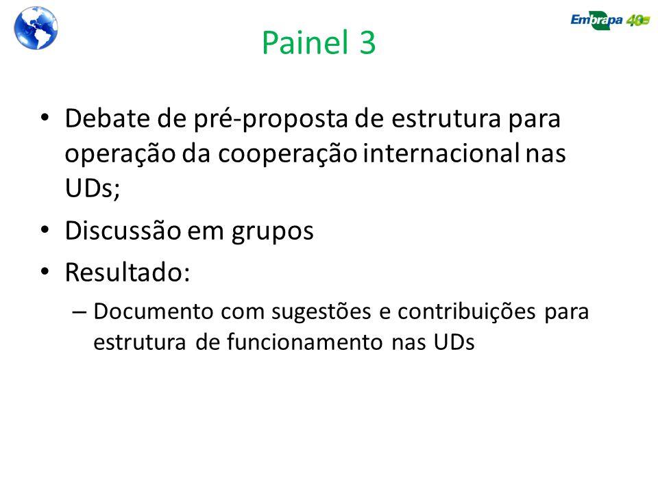 Painel 3 Debate de pré-proposta de estrutura para operação da cooperação internacional nas UDs; Discussão em grupos Resultado: – Documento com sugestões e contribuições para estrutura de funcionamento nas UDs