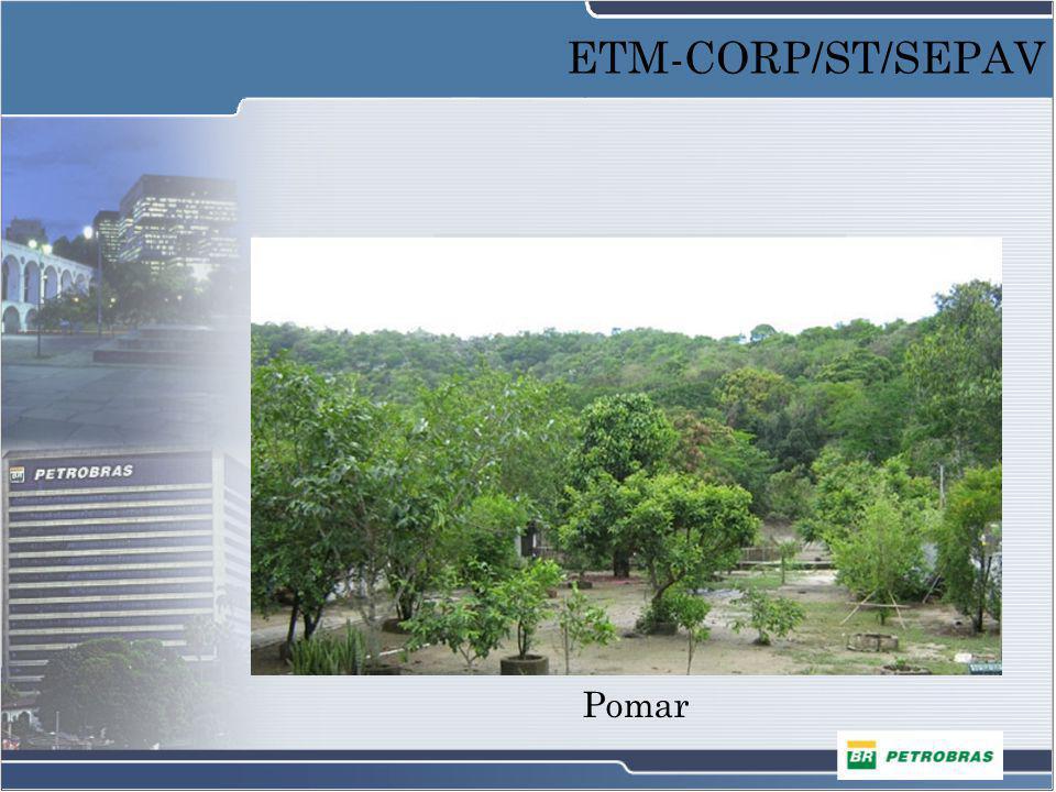 Pomar ETM-CORP/ST/SEPAV
