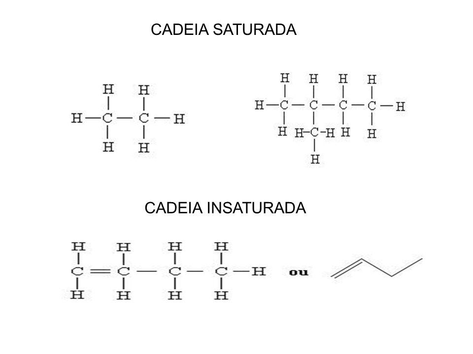 Tipos de Ligação do Átomo Carbono Saturado: É aquele que só faz ligações simples com outro Carbono ou qualquer elemento. Carbono Insaturado: É aquele