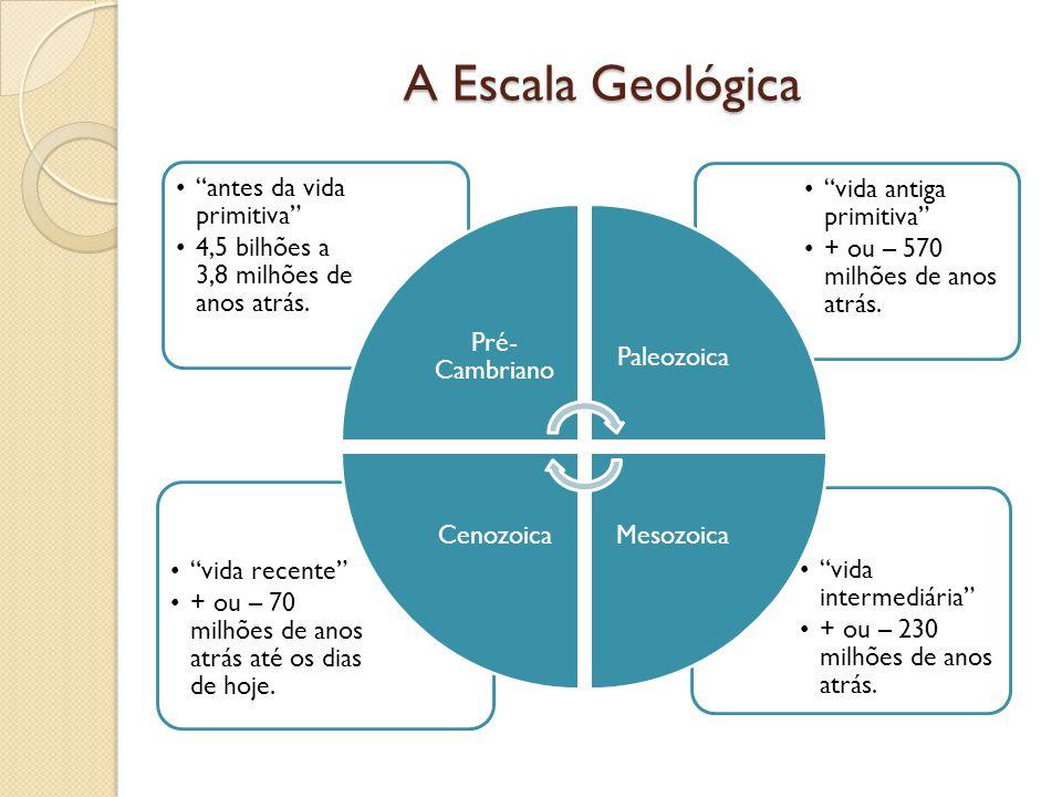 A Escala Geológica vida intermediária + ou – 230 milhões de anos atrás. vida recente + ou – 70 milhões de anos atrás até os dias de hoje. vida antiga