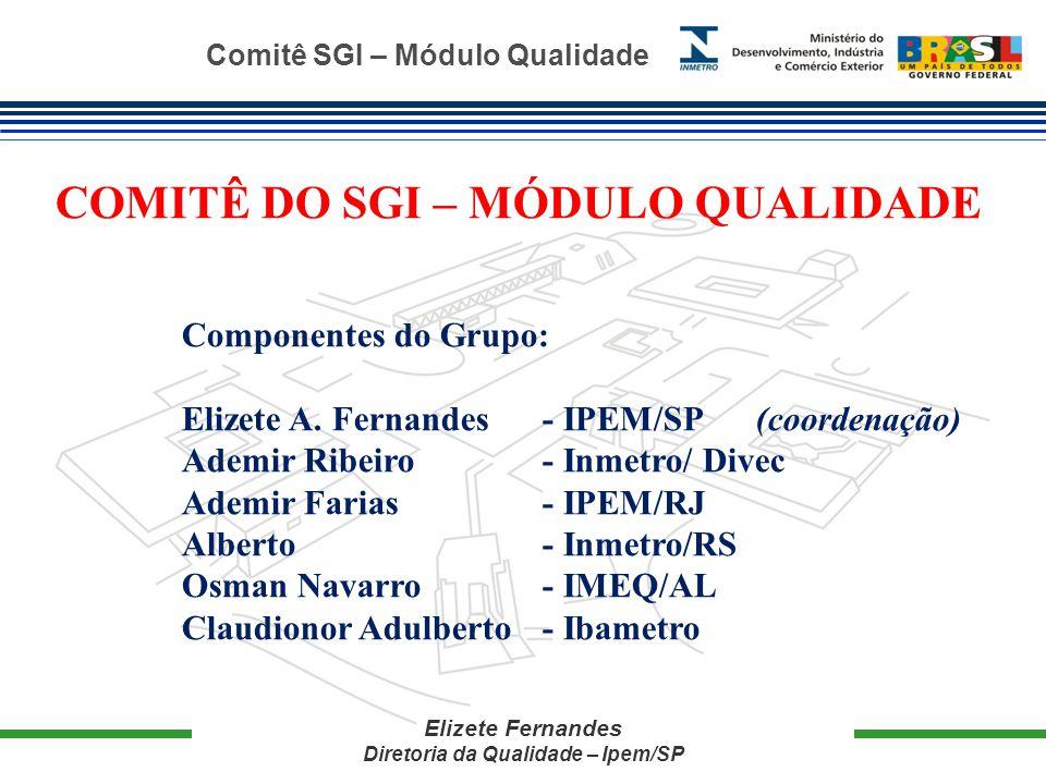 Comitê SGI – Módulo Qualidade Elizete Fernandes Diretoria da Qualidade – Ipem/SP COMITÊ DO SGI – MÓDULO QUALIDADE Componentes do Grupo: Elizete A.