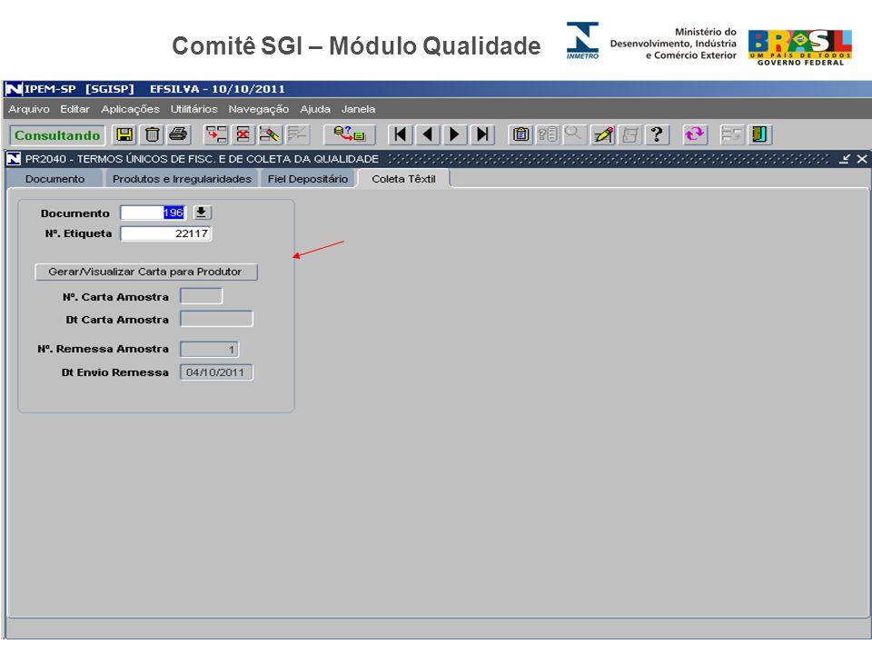 Comitê SGI – Módulo Qualidade Elizete Fernandes Diretoria da Qualidade – Ipem/SP