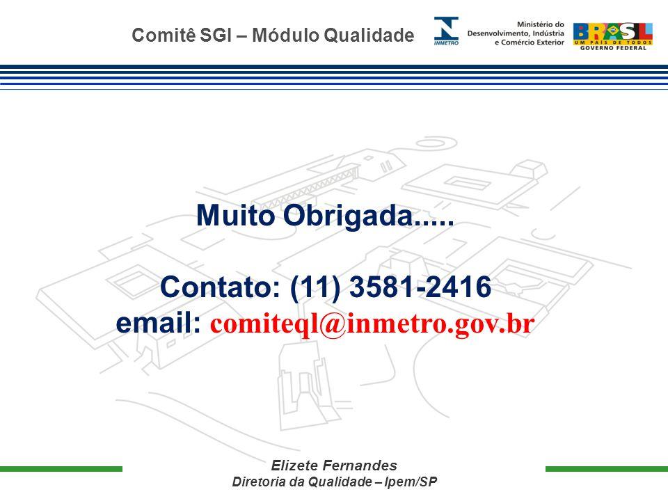 Comitê SGI – Módulo Qualidade Elizete Fernandes Diretoria da Qualidade – Ipem/SP Muito Obrigada.....