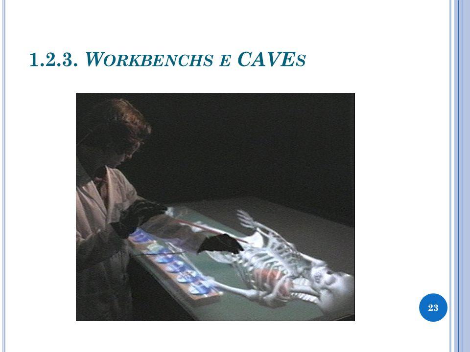 1.2.3. W ORKBENCHS E CAVE S 23