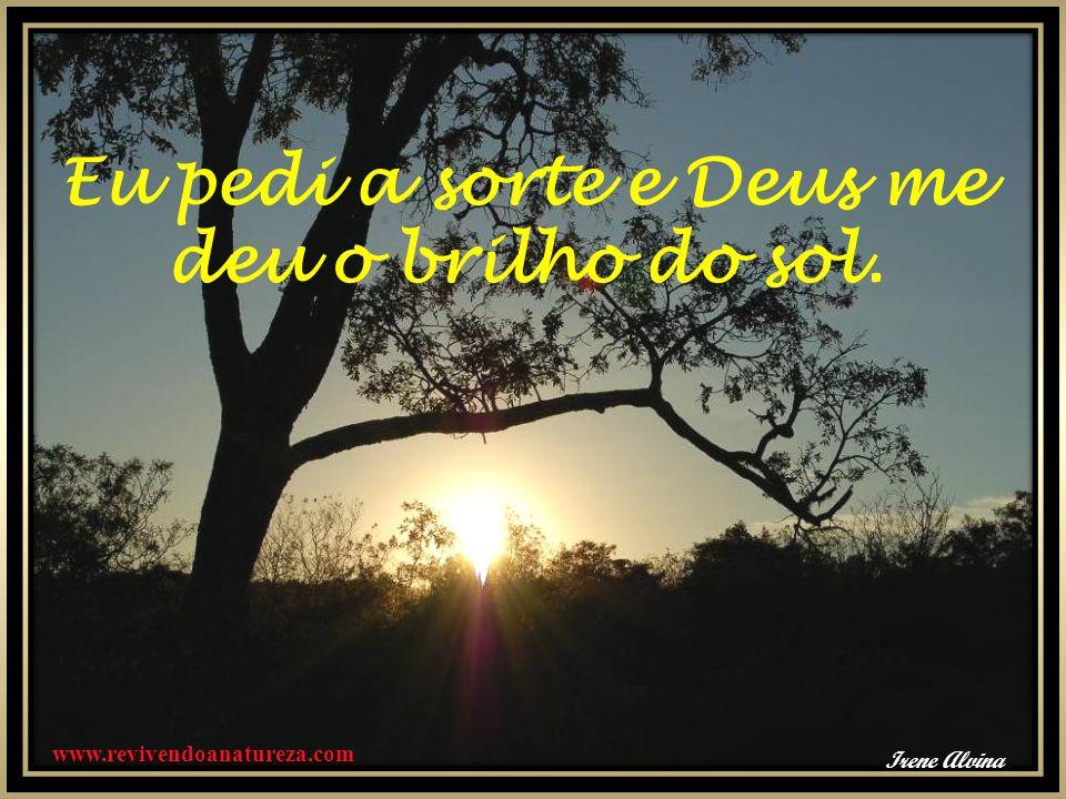 Eu pedi a sorte e Deus me deu o brilho do sol. www.revivendoanatureza.com Irene Alvina