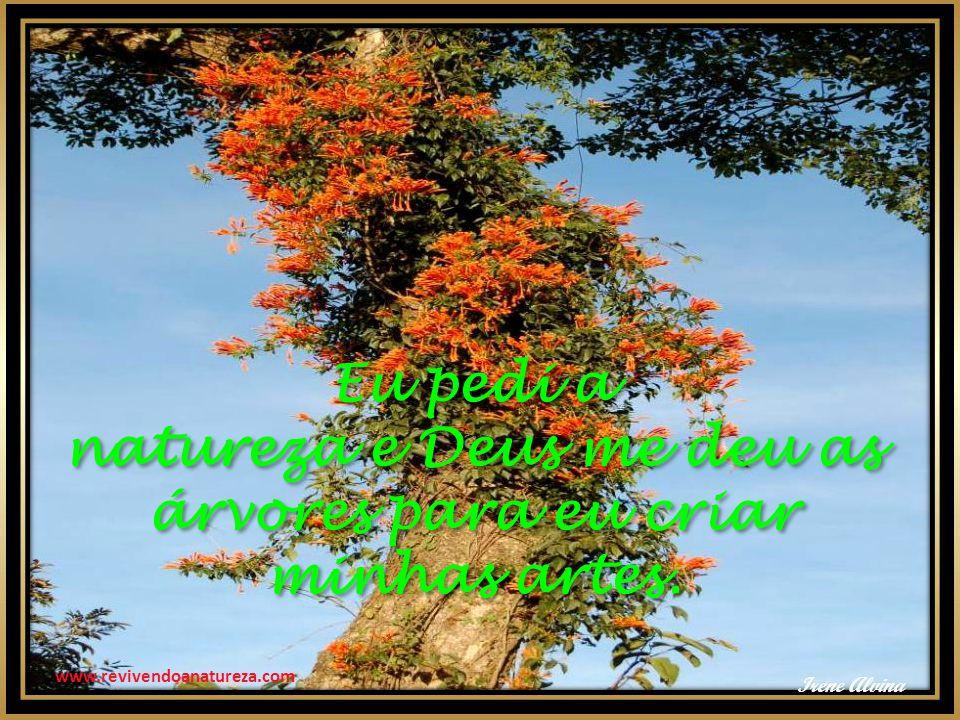 www.revivendoanatureza.com Eu pedi a natureza e Deus me deu as árvores para eu criar minhas artes. Eu pedi a natureza e Deus me deu as árvores para eu