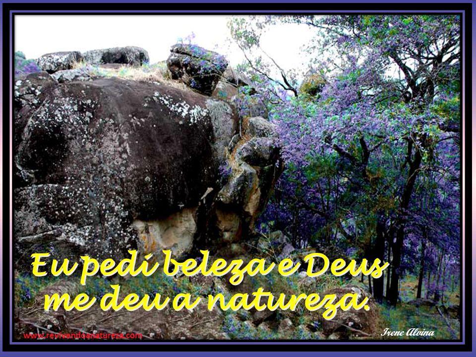 www.revivendoanatureza.com Eu pedi beleza e Deus me deu a natureza. Eu pedi beleza e Deus me deu a natureza. Irene Alvina