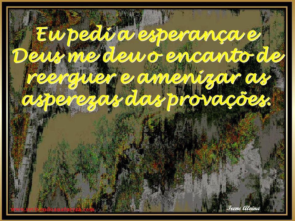 www.revivendoanatureza.com Eu pedi a esperança e Deus me deu o encanto de reerguer e amenizar as asperezas das provações.