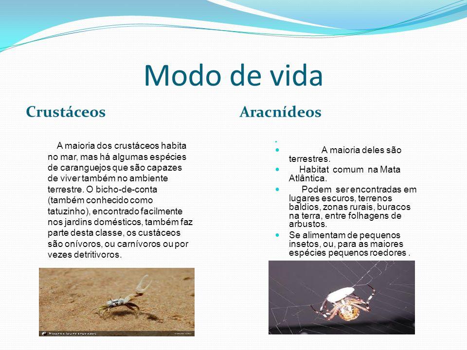 Modo de vida Crustáceos Aracnídeos A maioria dos crustáceos habita no mar, mas há algumas espécies de caranguejos que são capazes de viver também no ambiente terrestre.