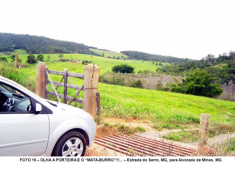 FOTO 16 – OLHA A PORTEIRA E O MATA-BURRO!!!... – Estrada do Serro, MG, para Alvorada de Minas, MG
