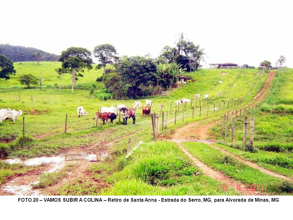 FOTO 20 – VAMOS SUBIR A COLINA – Retiro de Santa Anna - Estrada do Serro, MG, para Alvorada de Minas, MG