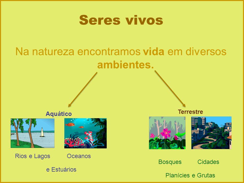 Seres vivos Na natureza encontramos vida em diversos ambientes. Aquático Terrestre Rios e LagosOceanos e Estuários BosquesCidades Planícies e Grutas