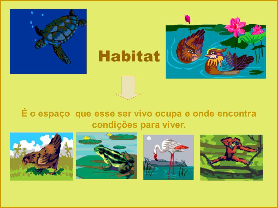 Habitat É o espaço que esse ser vivo ocupa e onde encontra condições para viver.