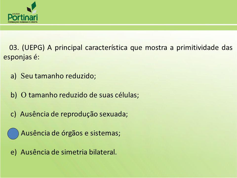 04.(UFPR) Com relação aos poríferos, assinale a soma dos itens corretos: 01) Possuem exoesqueleto.
