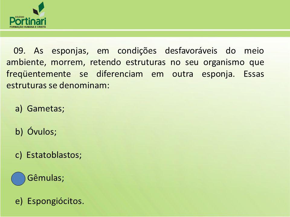 10.(UFPA) Nas esponjas, a digestão é toda intracelular.