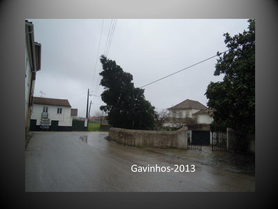 Gavinhos-2013