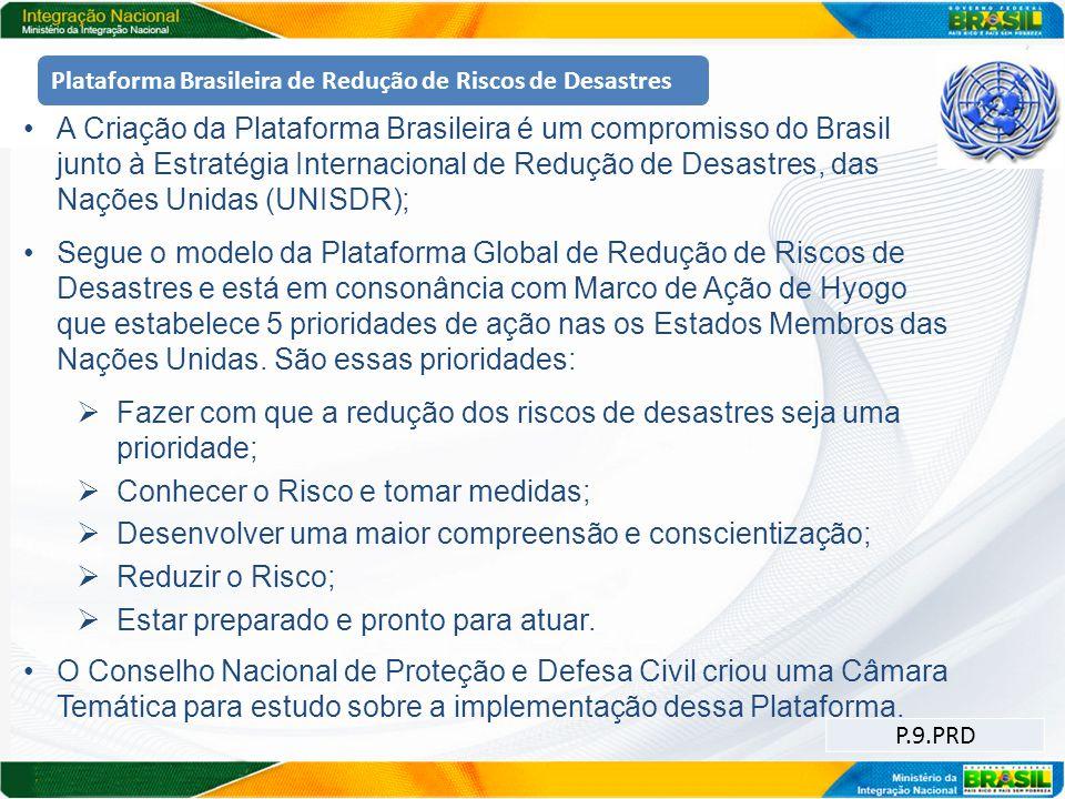 Plataforma Brasileira de Redução de Riscos de Desastres A Criação da Plataforma Brasileira é um compromisso do Brasil junto à Estratégia Internacional